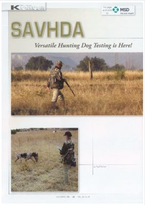 SAVHDA article in Wingshooter Vol22 no 4 page 28 - 31